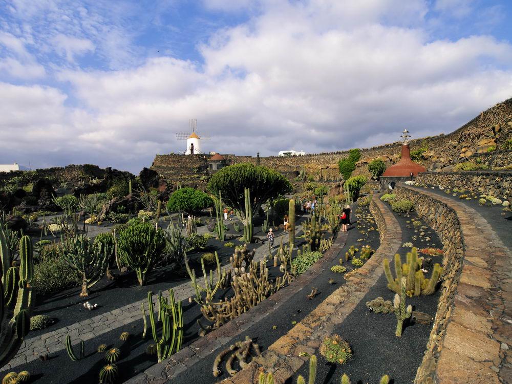Trend Travel Yachting, Charter Lanzarote - Kakteengarten
