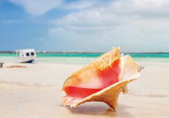 trend-travel-yachting-Revierinfo belize-placencia-3X2